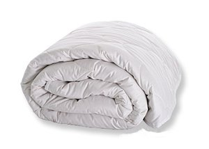 Sweet Dreams All-natural Tussah Silk Twin Comforter