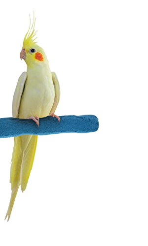 Sweet Feet and Beak Comfort Grip Safety Bird Pumice Perch - Patented Perch - Keeps Nails and Beak in Top Condition - Imitates Birds