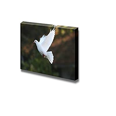 Canvas Prints Wall Art - Dove Fly in The Air wiht Forest Background.Outdoor - 24