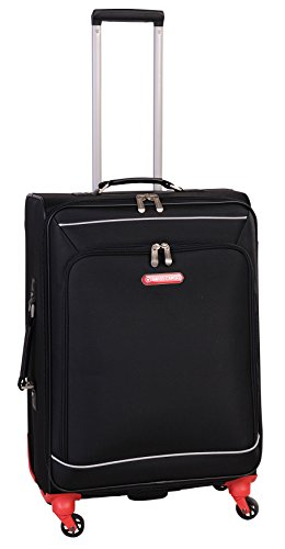 swiss-cargo-petra-24-inch-spinner-luggage-black-silver-checked-medium