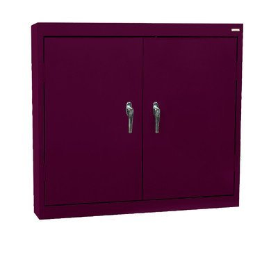 Wall 2 Door Credenza Finish: Burgundy