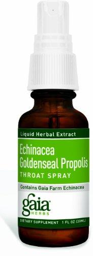 Gaia Herbs - Echinacea Goldenseal Throat Spray 1 oz