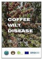 Coffee Wilt Disease Julie Flood