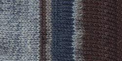 Bulk Buy: Patons Kroy Socks Yarn (6-Pack)