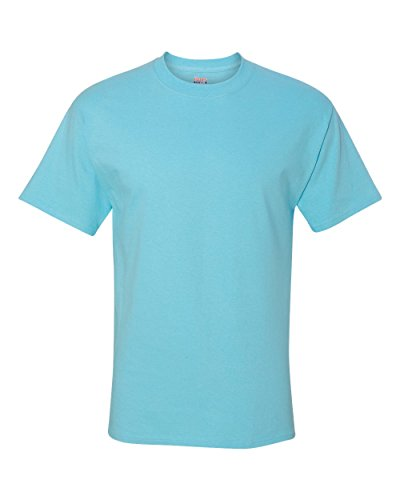 Hanes Blue Oxford (Hanes Beefy-T Adult Short-Sleeve T-Shirt)