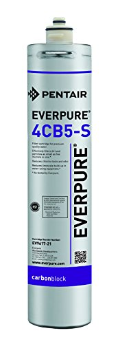 (Everpure EV9617-21 4CB5-S Filter Cartridge)