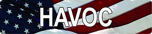 Any and All Graphics Havoc American Flag Design Patriotic 4