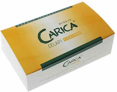 カリカセラピ SAIDO-PS501 3g入×40包入 B000RGDVNU