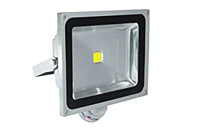 Ecosort-LED Flood Light PIR Motion Sensor Induction Sense 50W 85-265V Detective Sensor Lamp LED Projector Front Lamp
