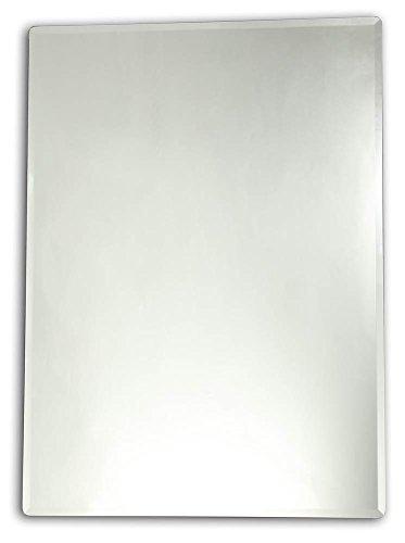 Chloe Lighting Goodwin Large Wall Mirror (27.56 in. W x 35.43 in. H (15.5 lbs.))