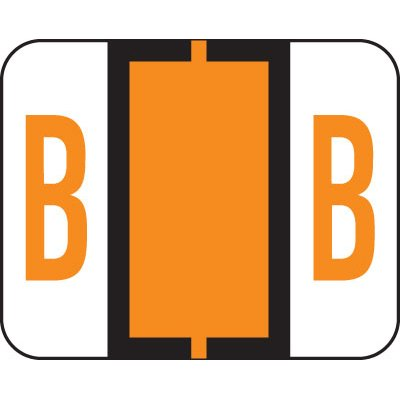 AMZfiling Alphabetic Color Coded Labels- Letter B, TAB Compatible, Light Orange (Vinyl, 500/Roll)