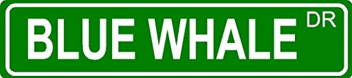 - BLUE WHALE Aluminum street sign 4