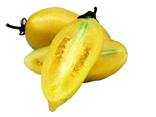 30+ ORGANICALLY GROWN Banana Cream Sausage Yellow Tomato Seeds, Heirloom NON-GMO, Determinate, Open-Pollinated, Paste, Meaty, Low Acid, Sweet and Delicious, Heavy Producer, From USA ()