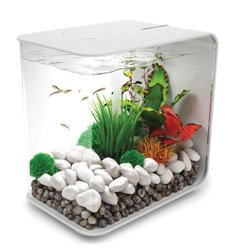 biOrb FLOW 15 Aquarium with LED Light – 4 Gallon, White