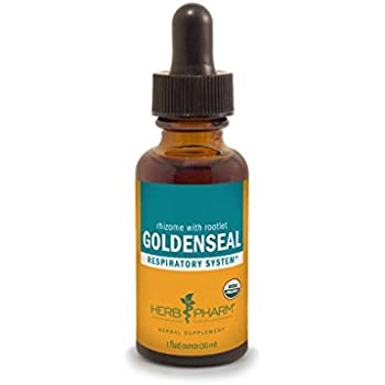 Herb Pharm Certified Organic Goldenseal Extract for Respiratory System Support - 1 Ounce