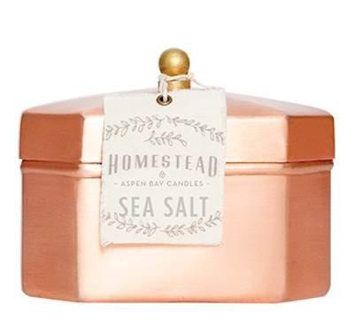 SEA SALT 12 oz Octagon Tea Tin Homestead Candle by Found Goods Market (Octagon Market Market)
