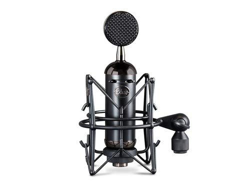 Blue Spark Blackout SL XLR Condenser Mic for Pro Recording and Streaming (137)