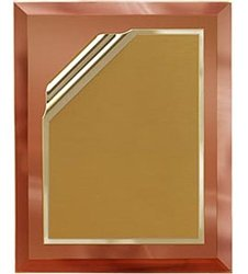 9 x 12 Gold Mirror Plaque Engraved with 7 x 10 Gold Rolled Plate by Gino's Awards Inc