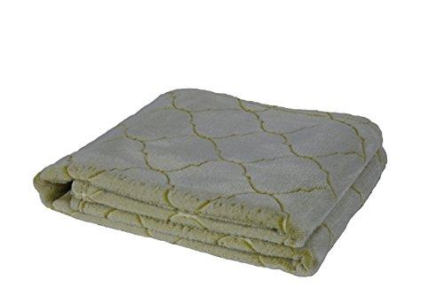 Longrich Textured Soft Flannel Throw-blanket, Green (Lantern Blanket Green)