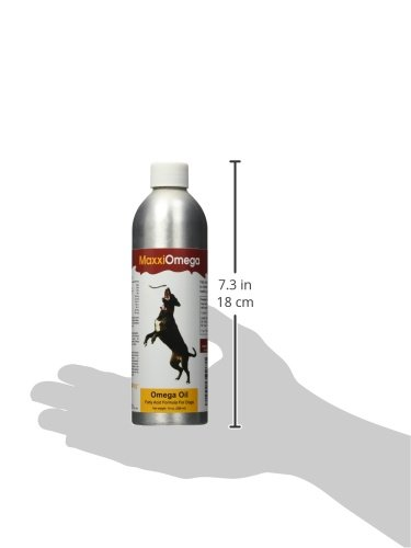 Omega Öl für Hunde - MaxxiOmega BESTE Fettsäuren für Hunde - Omega 3 6 9 Nahrungsergänzung - Flüssiges Fischöl - Essentielle Fettsäuren - DHA & EPA - Enthält Biotin - Natürliche Antioxidantien - Vitamin A, D & E - Nutzen für die Gesundheit von Hunden - Entzündungshemmend - Hautpflege - Allergielinderung - Glänzendes Fell - Pumpspray einfach zu handhaben - 100% Risikofrei-Garantie