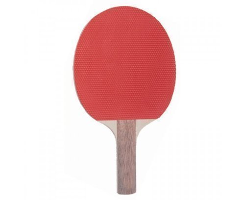 SCHILDKROT Pimpled Out Table Tennis Bat by OSG by OSG