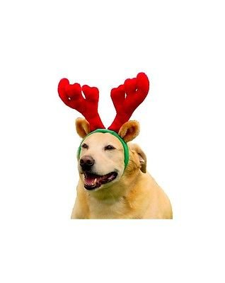 Outward Hound Holiday Christmas Antlers Wearable Dog Accessories, Brown