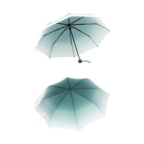 APAS Creative Gradient Compact Umbrellas