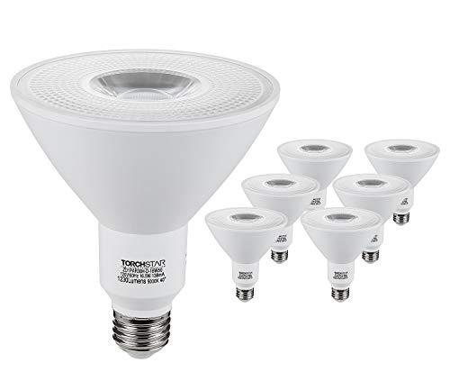 Led Flood Light Bulb Par38