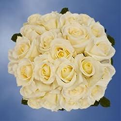 Buy White Roses | 100 Blizzard Roses for Valentine's Day