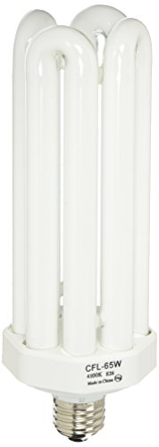 Lithonia Lighting CF65QT41 M6 Compact Fluorescent Lamp, White