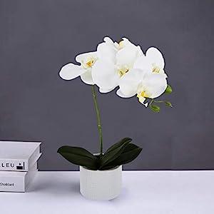 LIVILAN Silk Orchid Artificial Flower Arrangements with Vase 4