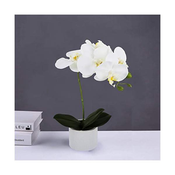 Livilan-Silk-Orchid-Artificial-Flower-Arrangements-with-Vase-Green-Leaf