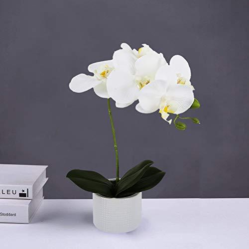 LIVILAN Silk Orchid Flower Lifelike Artificial Flower Arrangement with Decorative Ceramic White Square Vase Vivid Potted Orchid Plant,White