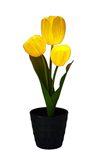 flower-luminescence-yellow-tulips-novelty-scented-led