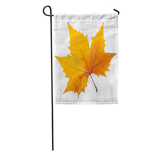 Semtomn Garden Flag Autumn Plane Tree Leaf White Keep Path Single Sycamore American Home Yard Decor Barnner Outdoor Stand 12x18 Inches Flag ()