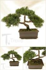 Artificial Japanese Cedar Bonsai Tree 9 Inch Tall Plant Garden Live Decor New