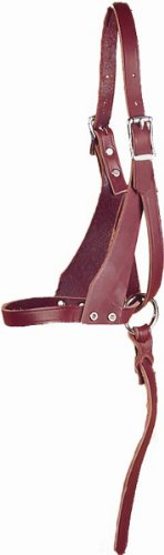 Price comparison product image Hamilton Latigo Leather Figure 8 Suckling Halter