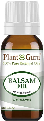 Balsam Fir Needle Essential Oil 10 ml 100% Pure Undiluted Therapeutic Grade (Pine Scent Oil)