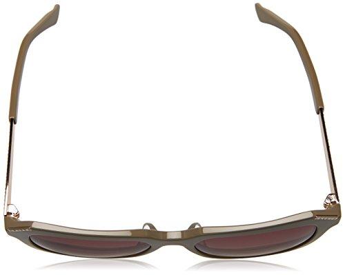 Dark Swarovski Shiny 55 5545F SK0115F para Sol Gafas de Mujer Brown vvUx8r