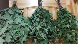 Set of 5 pcs Sauna Oak Whisk Broom Russian banya bathhouse venik веник
