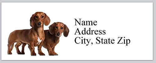 150 Personalized Matte Return Address Labels Dogs Dachshunds (bx 314) (Dog Personalized Address Labels)
