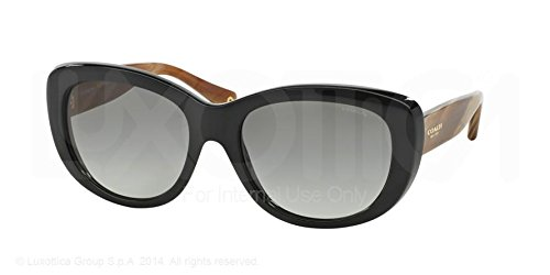 Coach HC8083 Sunglasses 519311 Gradient