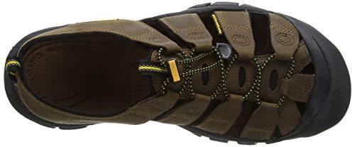 Sandals Outdoor Mens NEWPORT Bison Brown Keen TtqwFT