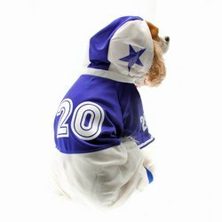 Colle (Football Player Halloween Costume For Dog)
