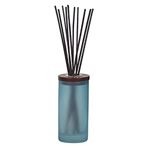 Chesapeake Bay Candle Mind & Body Reed Diffuser, Reflection + Clarity (Sea Salt Sage)