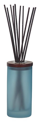Chesapeake Bay Candle Mind & Body Collection Reed Diffuser, Reflection + Clarity (Diffuser Blue Reed)