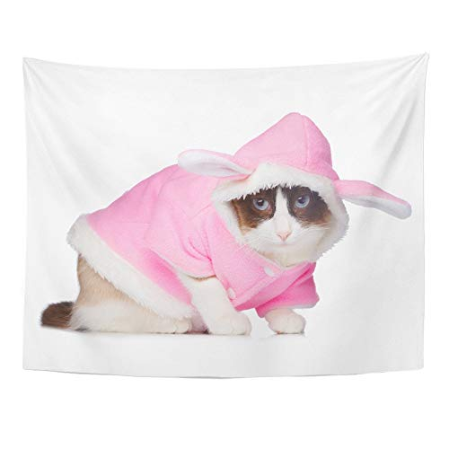 Emvency Tapestry Wall Hanging Halloween Cat in Pink Rabbit Costume White Accessory Animal Bunny Cute Domestic Polyester Fabric Home Decor for Living Room Bedroom Dorm 60x80 Inches ()