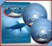 Offshore Series - 2