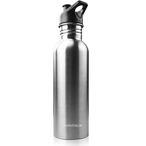 Sahara Sailor Stainless Steel Water Bottle W Carabiner Clip, 28 Oz