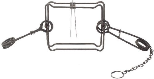 1 Dozen (12 PAK) Duke 330 Magnum Double Spring Body Trap for Beaver, Bobcat, Coyote, Otter by Duke